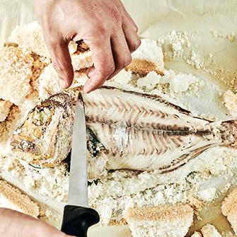 לומדים לבשל דגים